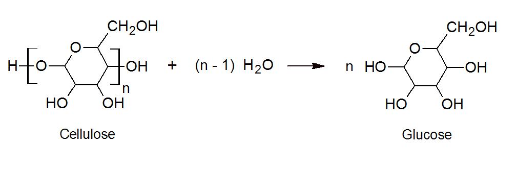 Cellulose Derivatives