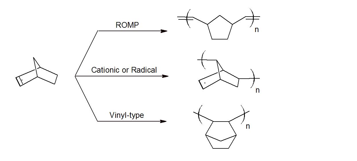 Cyclic Polyolefins